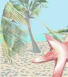 Sjöstjärna på strandbakgrunden Royaltyfri Foto