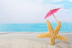 Sjöstjärna på stranden med slags solskydd Arkivbild