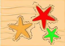 Sjöstjärna tre Arkivfoton