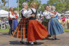 Sjövärde, Florida, festival för midnatt sol för USA mars som 3, 2019 firar finlandssvensk kultur royaltyfria bilder