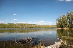 Is sjöyellowstone nationalpark royaltyfri bild