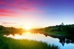 Sjö i skog på solnedgången romantisk sky Royaltyfri Fotografi