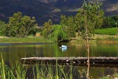 Sjö med bryggan, grön naturplats Arkivbilder