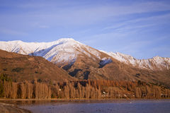 Sjö Wanaka, landskap för södra ö, Nya Zeeland Fotografering för Bildbyråer