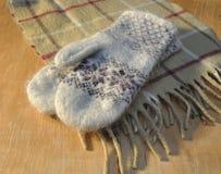 Sjaal en vuisthandschoenen Stock Foto