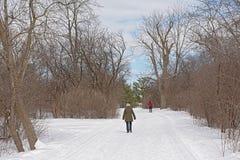 Sjam远足的徒步旅行者和越野沿光秃的树和灌木的滑雪足迹 免版税图库摄影