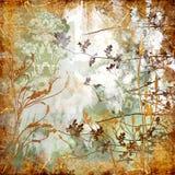 sjaskig bakgrund Royaltyfria Bilder
