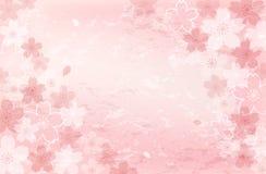 Sjaskig chic bakgrund för körsbärsröd blomning Royaltyfria Bilder
