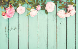 Sjaskig chic tappningbakgrund med rosor Arkivbild
