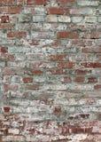 sjaskig vägg för tegelsten royaltyfri foto