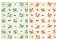 Sjaskiga chic bakgrunder med rosor Arkivfoton