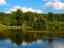 Sjön med waterlilies i naturligt parkerar Fotografering för Bildbyråer