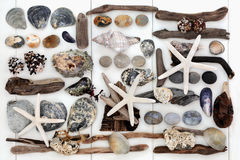 Sjösidaskattcollage Arkivbild