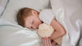 Sju-år-gammal pojke som faller krama sovande leksakbjörnen lager videofilmer
