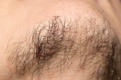 Sju - gammalt skägg för dag uppsöka upp tät dagmakro male gammala sju för caucasianen Royaltyfri Foto