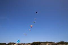 Sju kulöra drakar i rad som flyger på stranden Royaltyfri Bild