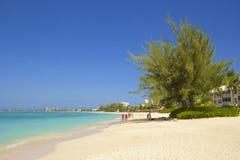 Sju mil strand i Grand Cayman arkivbild