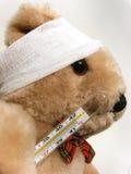 sjuk björn Arkivfoton