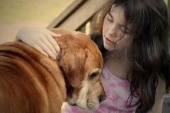 sjuk hund Arkivbilder
