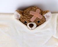sjuk nalle för björn Arkivfoton