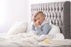 Sjuk pys med silkespapperlidande från förkylning Arkivfoton