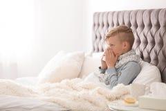 Sjuk pys med silkespapperlidande från förkylning Arkivbilder
