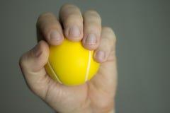 Sjukgymnastikövningsboll Royaltyfria Bilder