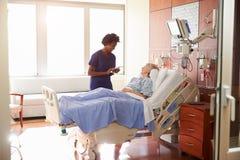Sjukhussjuksköterskan With Digital Tablet talar till den höga patienten Royaltyfri Foto