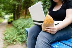 Sjukligt fet kvinna med för avhämtning bakelsemaskinskrivning på bärbara datorn fotografering för bildbyråer