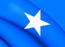 Sjunka av Somalia royaltyfri illustrationer