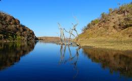 Sjunka Forrest Lake Argyle juveln av Kimberley Western Australia Royaltyfri Foto