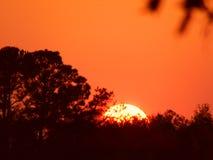 Sjunkande sol Royaltyfria Bilder