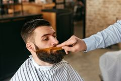 Skägg som klipps i Barber Shop Barber Cutting Beard royaltyfria bilder
