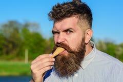 Skäggig man med glasskotten Mannen med skägget tycker om glass Mannen med skägget och mustaschen på strikt brutal framsida äter Royaltyfria Foton