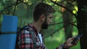 Skäggig manfotvandrare som går i skog bara och att försöka att kalla, dålig mobil anslutning lager videofilmer