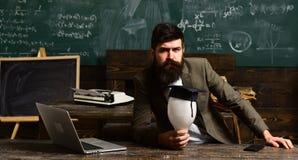Skäggig manhållkula i klassrum Forskarehipster med lightbulben på den svart tavlan Affärsmannen i dräkt sitter på skolan Royaltyfria Foton