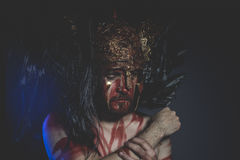 Skäggig mankrigare med metallhjälmen och skölden, lösa Viking Arkivfoto