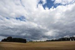 Skäggstubb för stormen Royaltyfria Bilder