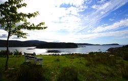 skälla havet Fotografering för Bildbyråer