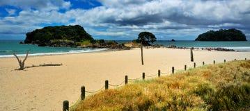 skälla zealaen för det nya överflöd för strandmanganuimt den fridfulla Fotografering för Bildbyråer