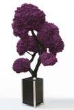 skällleafen låter vara den gammala planteren purpurt treeträ Royaltyfri Foto