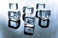 skära i tärningar issmältning Royaltyfri Bild