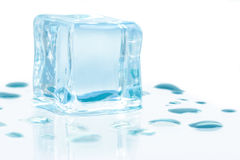 skära i tärningar issmältning Fotografering för Bildbyråer