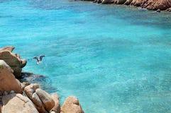 Skärgård Maddalena, strand för Caprera ö, Cala Coticcio Himmel på jord arkivbild