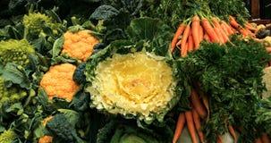 Skärm av variationer av vintergrönsaker på en matmarknad Arkivfoto