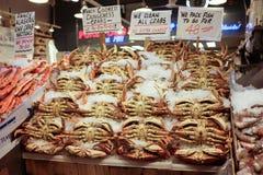 Skärm för Dungeness krabba på marknaden för pikställe, Seattle arkivbilder