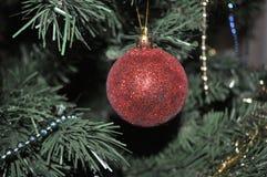 Skärm för julbollprydnad Fotografering för Bildbyråer