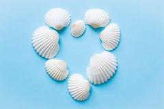 Skład egzotyczny morze łuska na błękitnym tle pojęcia tła ramy piasek seashells lato obraz stock