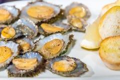 Skålsnäckor tjänade som i en restaurang på ön av Flores i Azoresna, Portugal Royaltyfri Foto