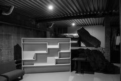 Skåp i den mörka källaren Inre av det nytto- rummet Royaltyfri Foto